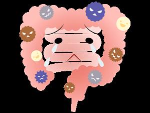 悪玉菌優位の腸内