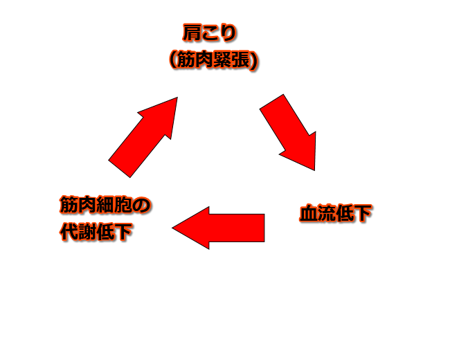 慢性化肩こりの悪循環の図