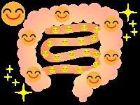 腸内環境がキレイイメージ