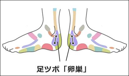 足ツボ卵巣