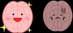 健康な脳・不健康な脳