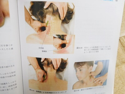首の筋肉のマッサージ
