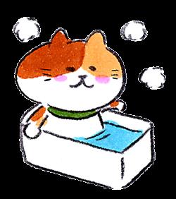 風呂に入る猫イラスト