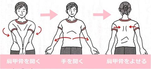 肩甲骨を動かす体操イラスト