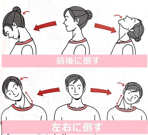 首を前後左右に倒すイラスト