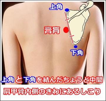 上角と下角の中間。肩甲骨内側のきわにとる