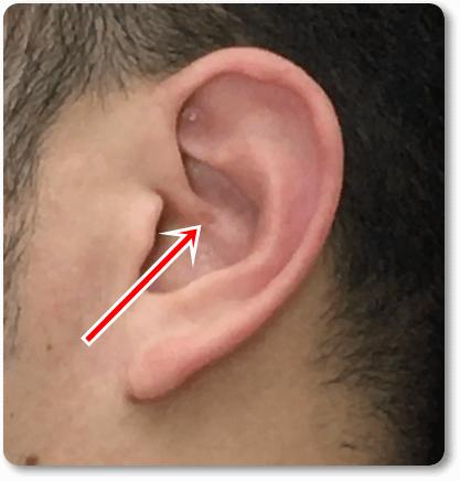 セルフ耳ツボのやり方2
