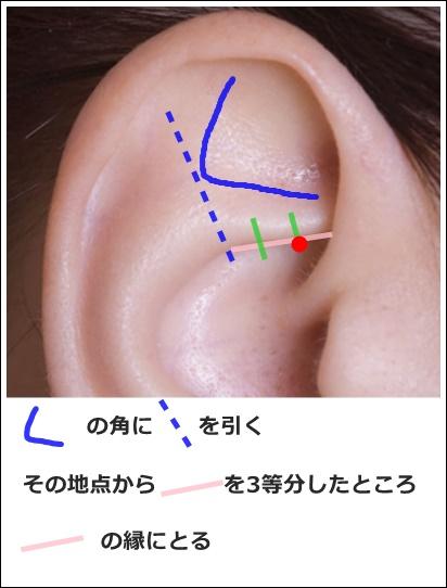 耳ツボ膀胱の位置解説
