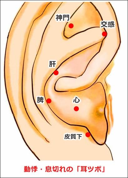 動悸・息切れの耳ツボ