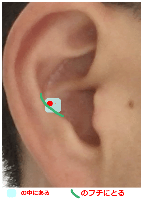 耳ツボ脾の位置
