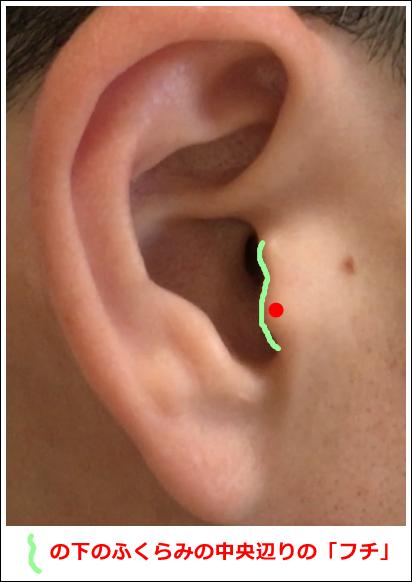 耳ツボ副腎の位置