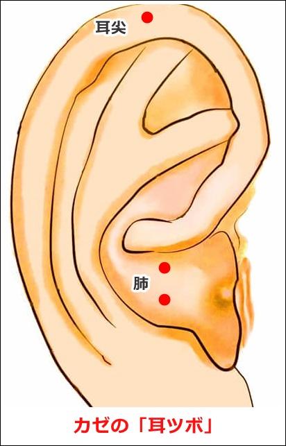 カゼの耳ツボ