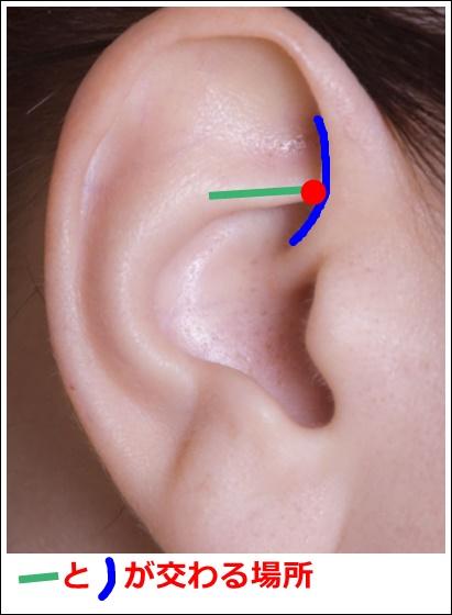 耳ツボ【交感】の位置