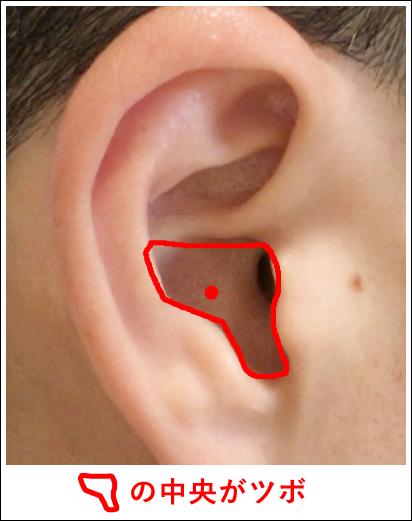 耳ツボ【心】2
