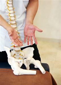 患者さんに骨盤の説明をする治療家