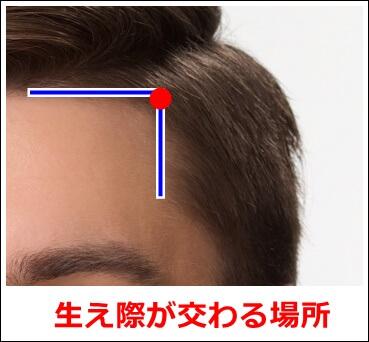頭維の場所