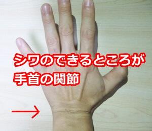 手首のシワ