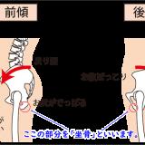正しい座り方 坐骨の位置