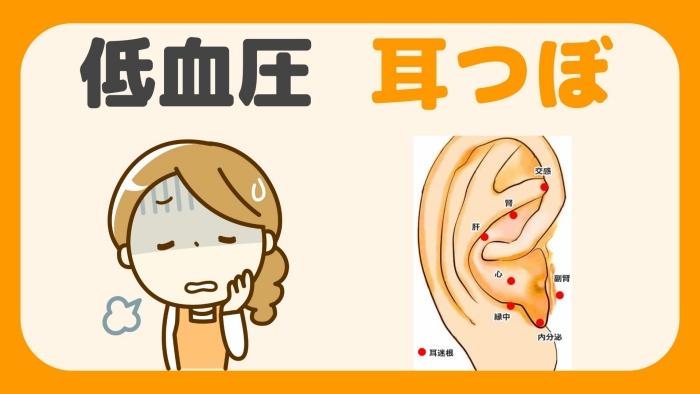 低血圧 耳つぼ