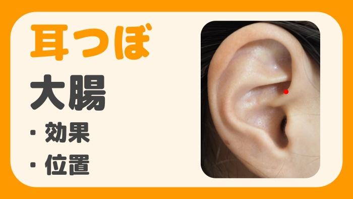耳つぼ大腸