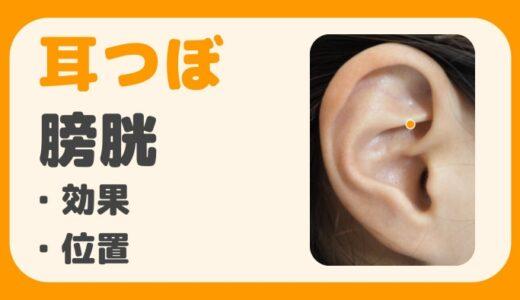 耳ツボ【膀胱】