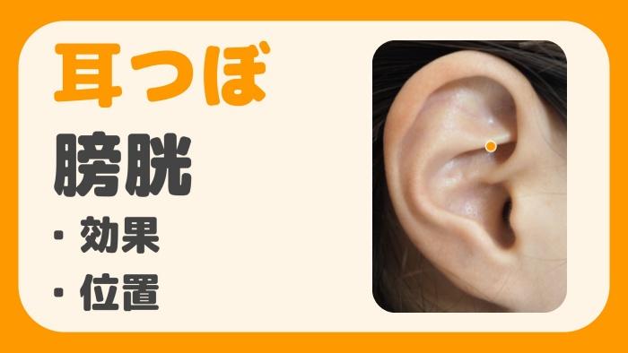 耳つぼ 膀胱