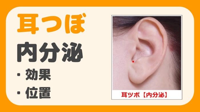 耳つぼ 内分泌