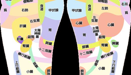 足つぼの図