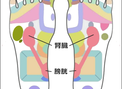 尿道炎の「足ツボ」