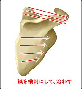 肩こりの治療ポイントは肩甲骨が動きやすくなること!