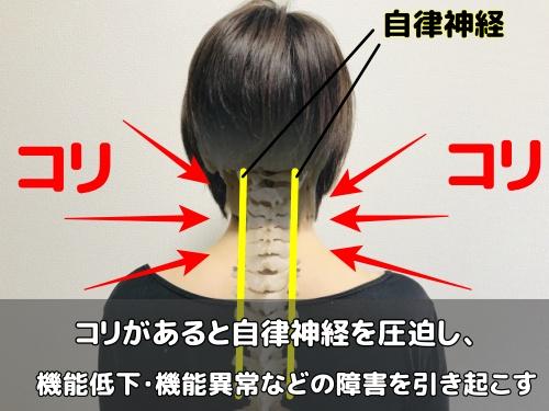 自律神経の圧迫イメージ