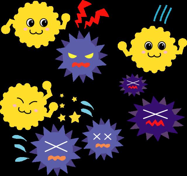 免疫 イメージ