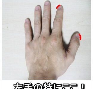 鍼が上手・痛くないと思われるために、まず爪を切りなさい!